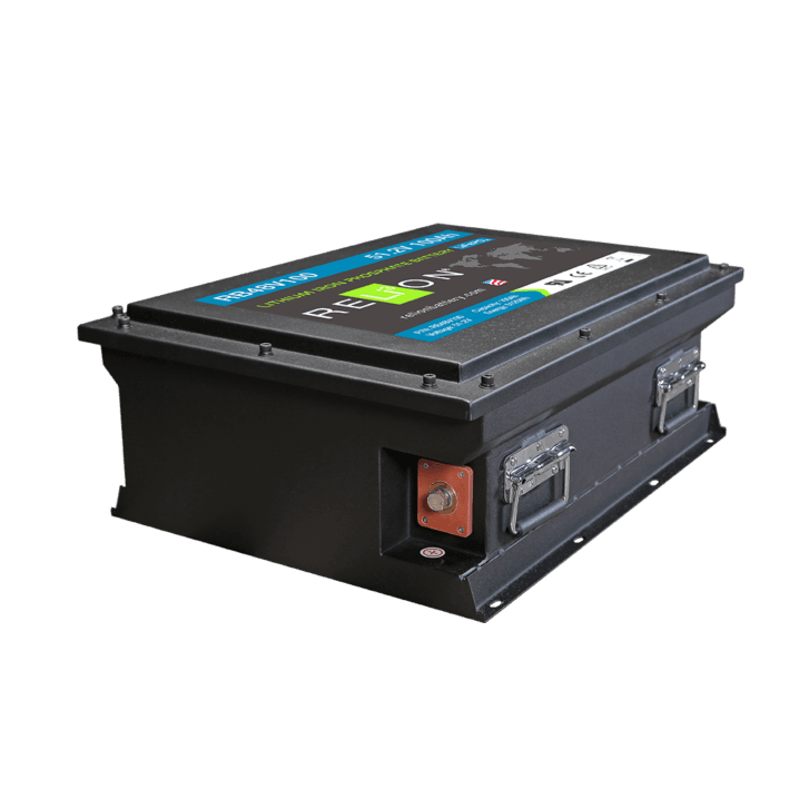 RB48V100 Lithium Ion Battery
